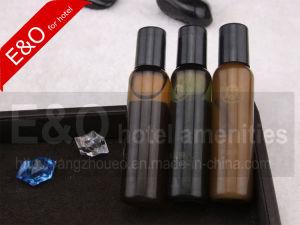 De Beschikbare Shampoo van het hotel en Zepen, de Toebehoren van de Badkamers van het Hotel, de Belevingswaarde van het Hotel eo-B162