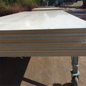Comité van het Triplex van Gelcoat het Glasvezel Met een laag bedekte voor het Lichaam en de Deur van de Vrachtwagen