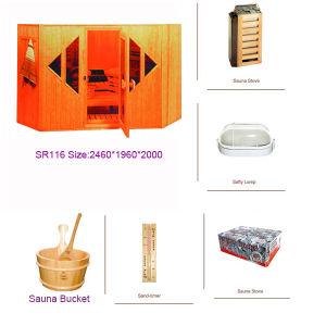 Modieuze stoom Sauna Room (SR116)