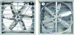 Schweres Hammered Exhaust Fan mit China Factory Supply