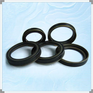 Ó anéis de vedação (OU20104578)