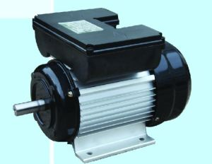 Yl Series Single-Phase Asynchronous Motor