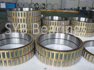 Los rodamientos de rodillos (N 5245 AMW33/R10-14/P6)