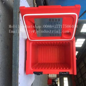 RotoはPEのプラスチック商業クーラーボックスを形成した