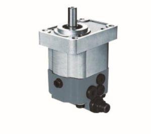 Hydraulische Zahnradpumpe mit hydraulischem Ventil Cbws/F