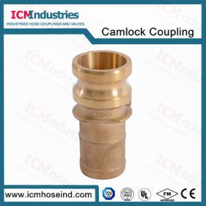 Accoppiamento rapido d'ottone del Camlock del Camlock filettato Bsp