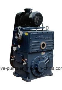 2h-160DV Вращающийся вакуумный насос поршня из Китая в режиме реального производителя