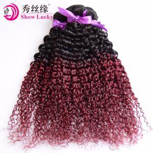 自由な出荷2の調子は1b/99jヨーロッパのバージンの人間の毛髪の織り方のねじれた巻き毛のOmbreの毛10Aの等級を着色した