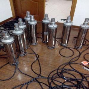 Usine Grand Étang d'énergie solaire la pompe à eau DC de la pompe à eau solaire