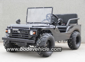 O bode novo 500W Electric dune buggy