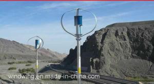 Vertikalachsen Windturbine (600W-10KW)