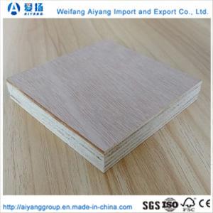 Núcleo de álamo para muebles de madera contrachapada de comerciales en todos los tamaños