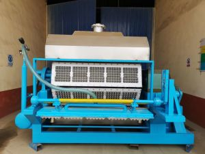 plateau à œufs Machine papier / papier plateau à œufs Making Machine