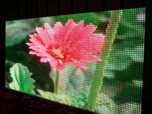 P5 Moniteur numérique de la TV couleur à l'intérieur de l'écran LED