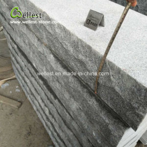 G603 grand jardin de granit gris Tremplin pour l'extérieur