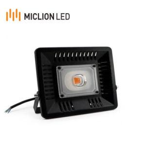 Luz de crescer no mercado Europa Ce 100W Projector de alumínio IP65 Full Spectrum