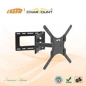 좋은 품질 새로운 LCD 마운트/텔레비젼 마운트 /LCD 부류 (CT-WPLB-T521NC)
