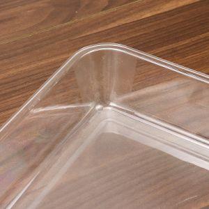 بالجملة تماما - حجم يصوّر طعام [ن] فحمات متعدّدة [غسترونورم] وعاء صندوق