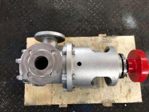 CE aprobada NYP52A Bomba de engranajes internos de acero inoxidable