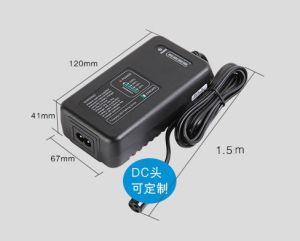 電池メートルを持つG60-12f6 19.2V LiFePO4電池のスマートな充電器