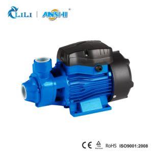 Pomp van het Water van Anshi 0.5HP de Rand met Thermische Beschermer (QB80)