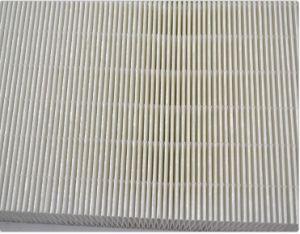 Фильтр HEPA Mini-Pleat без сепаратор для арбитра национальной категории