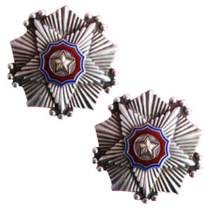 Die 2018 Form-Förderung-Zoll wir Agent-Polizei Badge ReversPin (177)