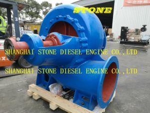 Moteur diesel de la courroie pompe Dirven 300HW-7s 12HBC-40 910m3/H 5 mètres