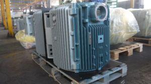 280 de Huisvesting van de stator/het Deel van de Generator door SGS wordt verklaard die