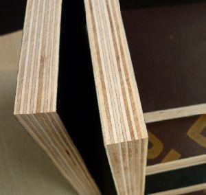 ブラウンの閉める合板かフィルムは具体的な型枠のための合板に直面した