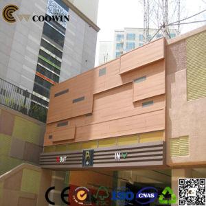 Parete esterna di plastica composita di legno (TH-10)