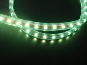 Tira SMD RGB de la Luz (5050)