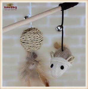 Teaser van de Kat van het Stuk speelgoed van /Pet van de Producten van het huisdier Houten Stuk speelgoed (KB3023)