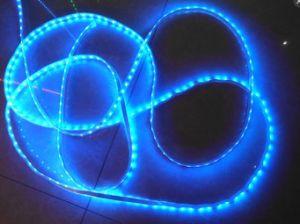 Color azul SMD2835 SMD5050 de la luz de banda de baja tensión