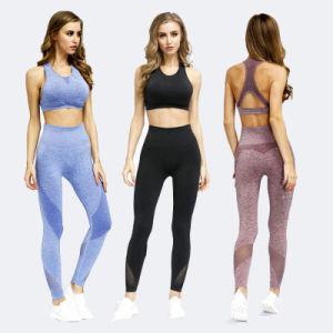 Commerce de gros Womens sport yoga Pant Bras ensemble Lady's Tracksuits de remise en forme personnalisé défini