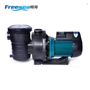 Pompe à eau de sauna de plein air chinoise 1.5HP
