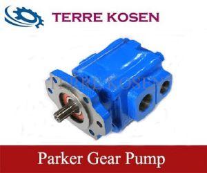 Pumpe des Rollenlager-P31