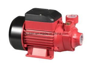 Elevadores eléctricos 0.5HP-1.2centrífugos de alta pressão da bomba de água HP Qb60