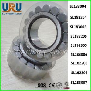 Roulement à rouleaux cylindrique de série de SL plein SL183004/SL182204/SL183005/SL182205/SL192305/SL183006/SL182206/SL192306/SL183007/SL182207/SL192307/SL183008/SL182208