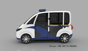 Novo Design 4 Seaters Electric Radiopatrulhas com portas