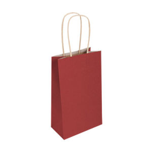 Commerce de gros différents mat papier couleur ordinaire sac cadeau (YH-PGB002)