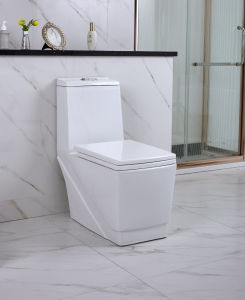 China-Hersteller-gesundheitliche Luxuxware-keramische Arbeitskarte-Toilette (YL1052)