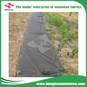Couvercle de la récolte de tissu stérile de la couverture du sol pour effet de serre