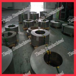 Hoja de acero inoxidable 304L (304 316 321 316L 310S 430)