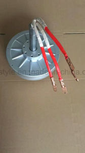 Dauermagnetdrehstromgenerator des Serie 133dm Coreless Platten-Dauermagnetgenerator-Pmg133dm 96V 1.0kw 380rpm