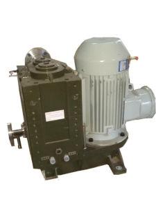 gas asciutto senza olio verticale 150L/S che elabora il pulsometro della branca (DCVA-150U1/U2)