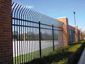 平らにされたやりによって囲う黒色火薬のコーティングの錬鉄の塀の/Ranch溶接された電流を通された/Garden/Poolの鋼鉄
