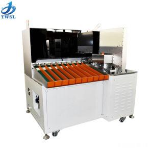 10 de Batterij die van het Lithium van kanalen en het Testen Machine twsl-1000-5 sorteren