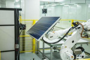Fabricant de panneaux solaires 80W (BR-P80W)