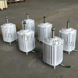 Generatoren der Wind-Turbine-Energien-1kw Eolic, 1000 Watt-Wind-Tausendstel